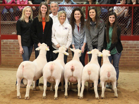 First Place Flock - Fort Worth